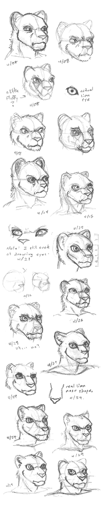Exploratory sketches of sorceress character's face